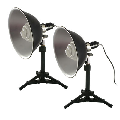 Two Tabletop Lights Set